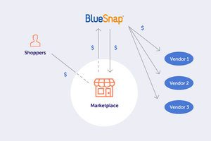 Bluesnap Pay